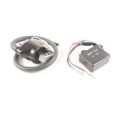 Bobine et module allumage moteur Robin/Subaru