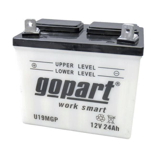 Batterie tondeuse Autoportée