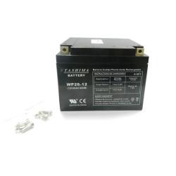 Batterie tondeuse autoportée Snapper